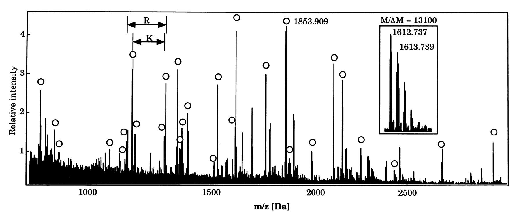 Spettrometro di massa proteine