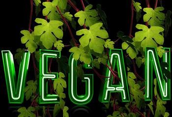 vegan-1161192_960_720_art